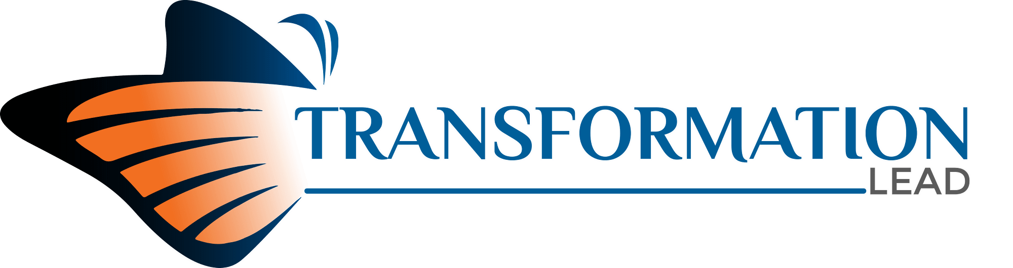 TransformationLead